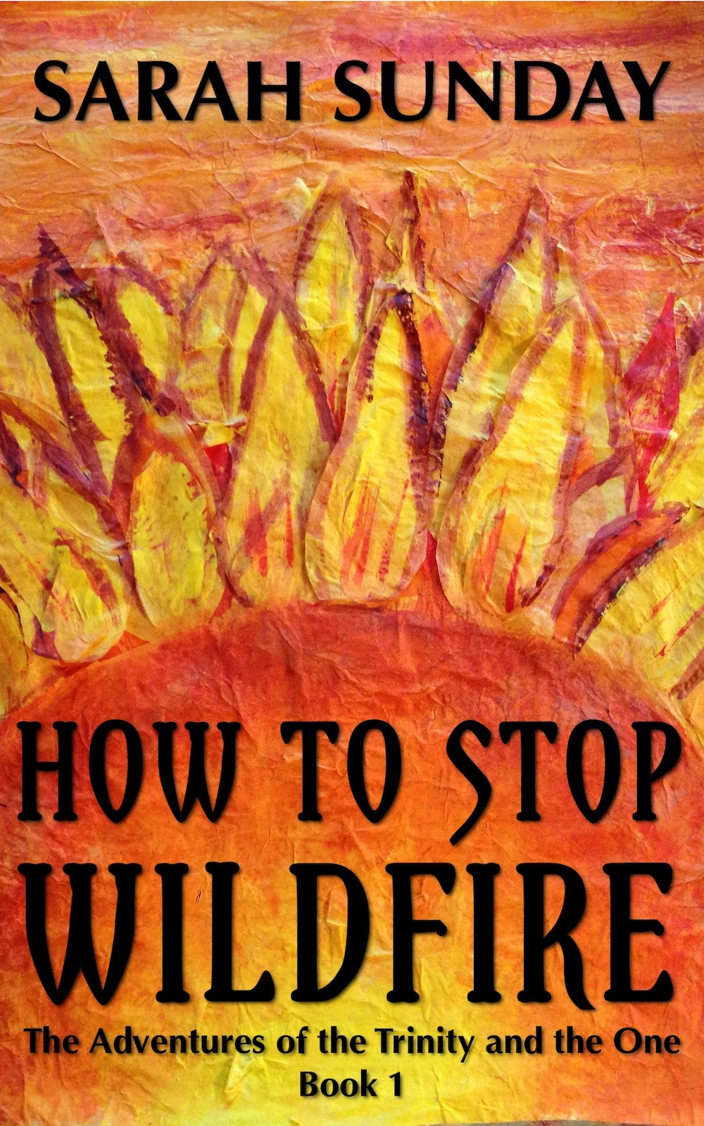 One Year Anniversary of How to Stop Wildfire!