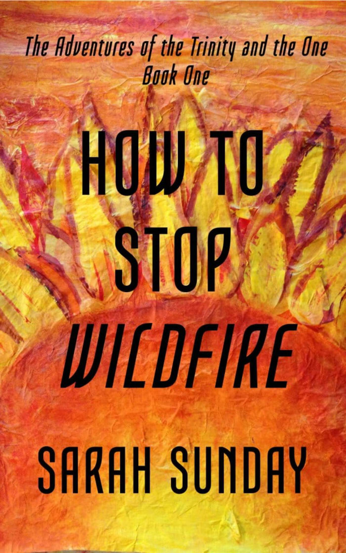 New Book Cover for How to Stop Wildfire!